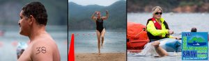 Lake-Moomaw-Open-Water-Swim-swimmers